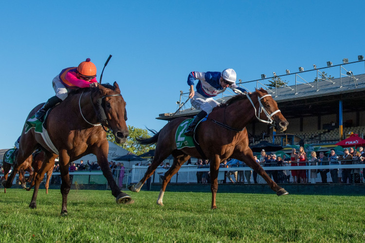Alward takes out Toowoomba Cup