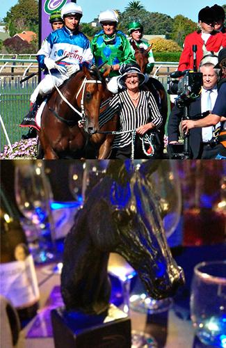 Ruud Awakening wins the Diamond Stakes