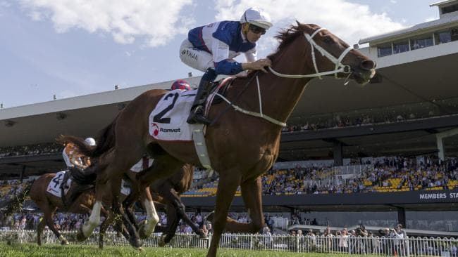 Wanted: owners for classy European stayers