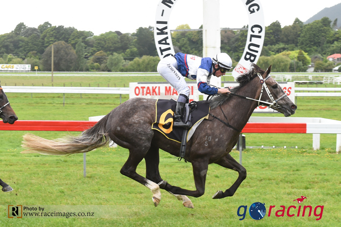 Flying filly Sentimental Miss contests Lowland Stakes
